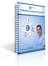 Profitable Productivity System Workbook